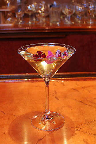 Martini con St. Germain Elderflower cordial