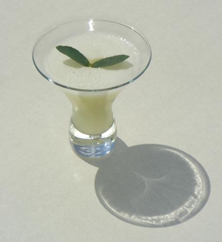 Eucalyptus martini creado por Humberto Marques